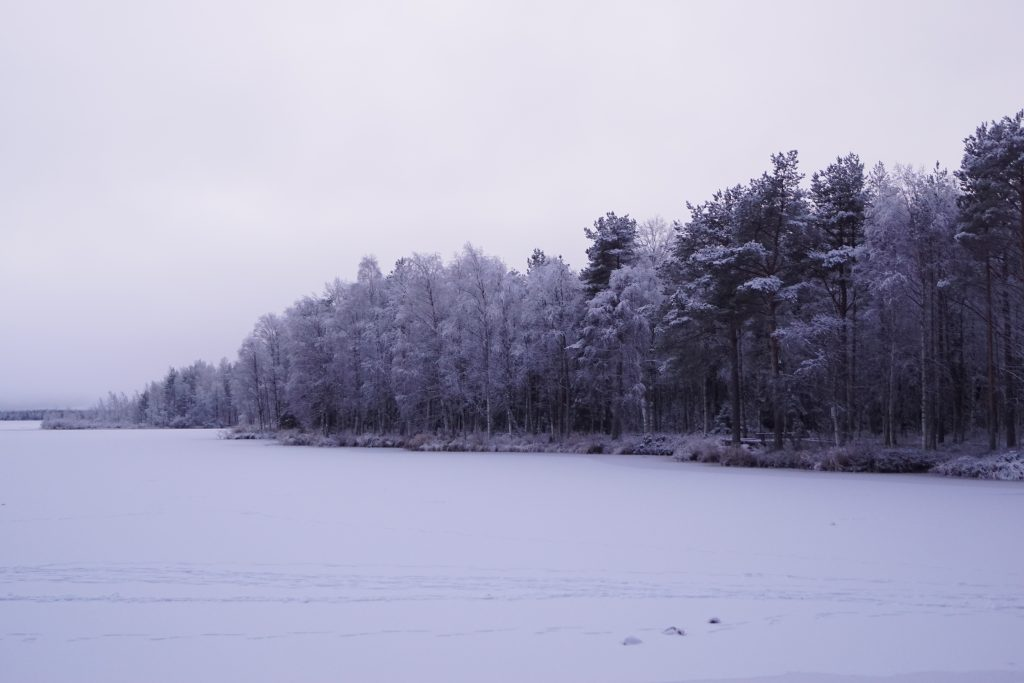 The dock of the Olkkajärvi lake