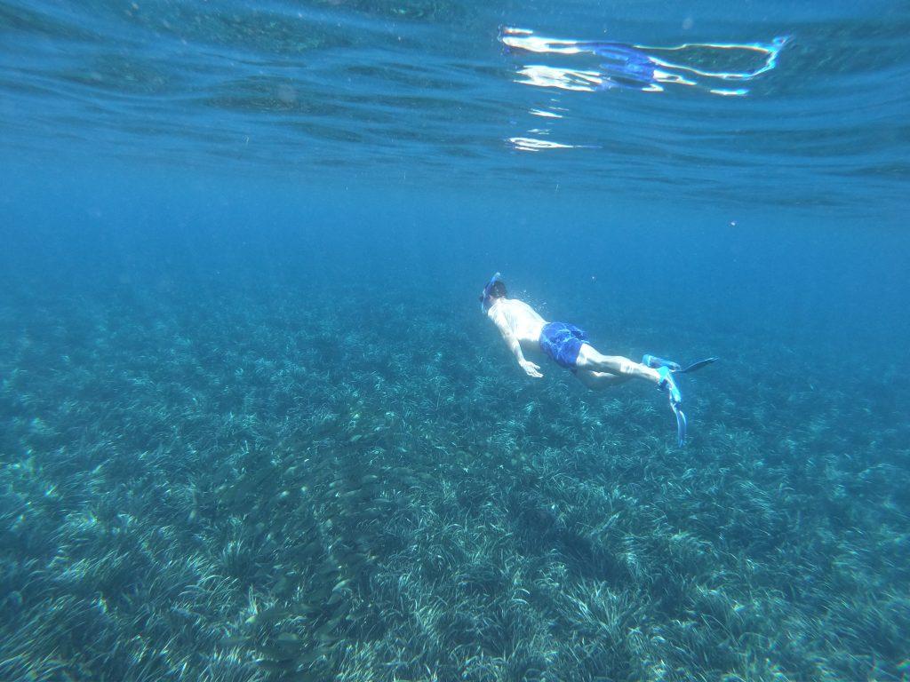 Snorkel in Aguadulce